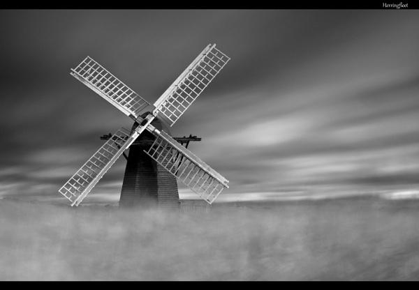 Whispering Wind by fazzer