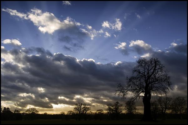 Attingham Cloudscape . by Niknut