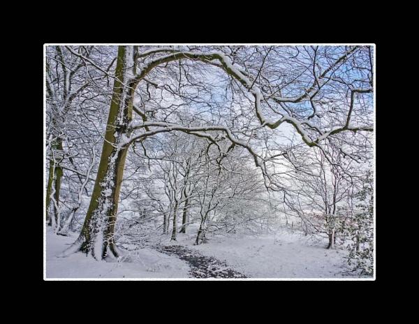 Winter Scenes in April by DicksPics