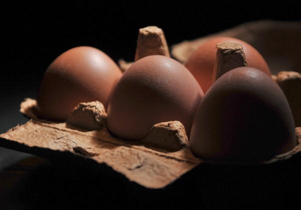 Eggsposure by McClicker