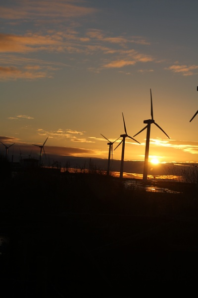 Filmby Wind Farm by Naturesview