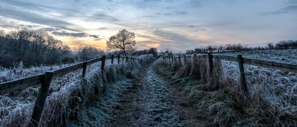 Frozen by Giorgie0