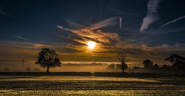 Morning Mist by MomentsInTime