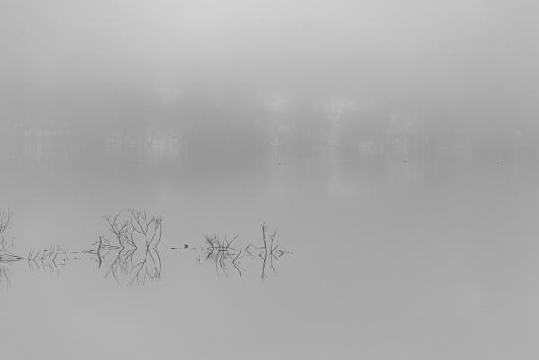 Sound of silence by TeruoAraya