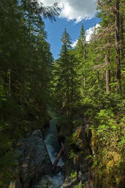 Opal Creek by mikeoregon