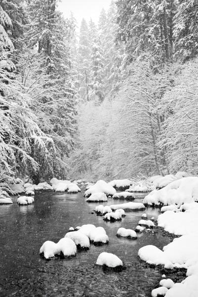 Opal Creek, Winter 2011 by mikeoregon