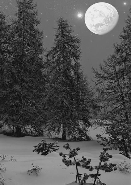 Snowy night by pluffy