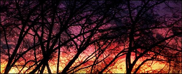 December Dawn by mrjes