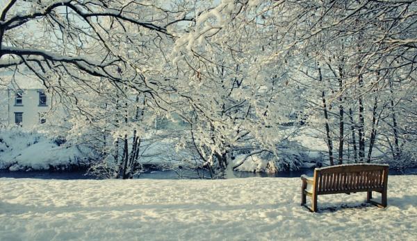 Winter bench by Joscelyne
