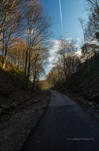 Cycle Path by Alan_Baseley