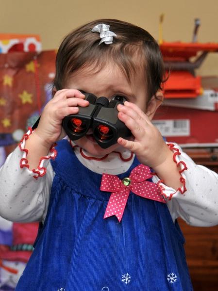 Peek - a - Boo, I see you! by joesav
