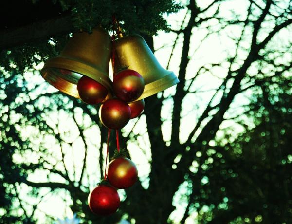 Happy Holidays by Chinga