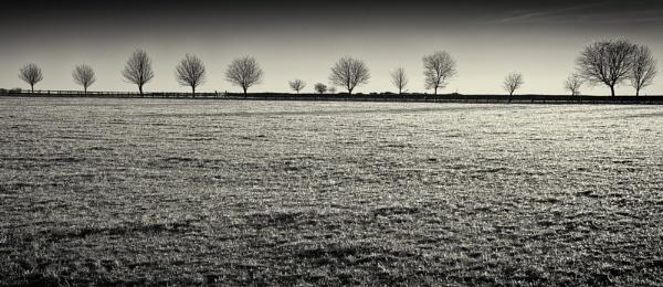 Ice Field by sensorman