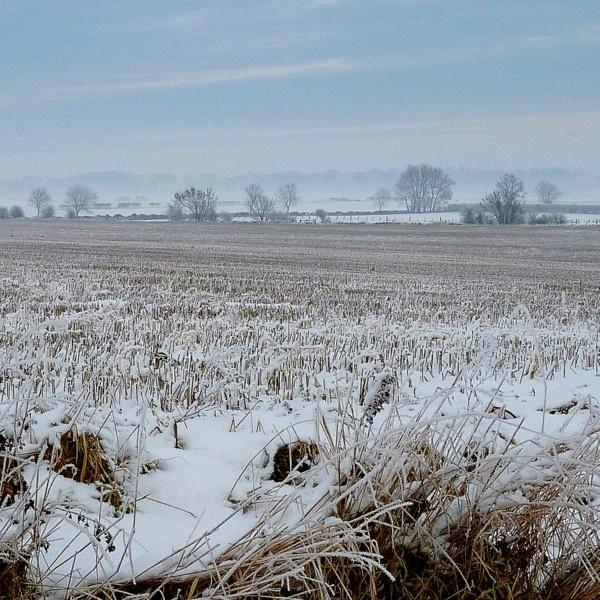 Winter Fields by Philip_H