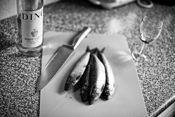 *sardines* by gaborfoto