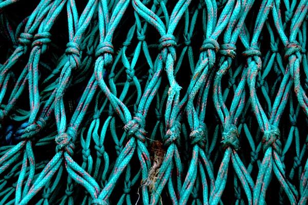 green net by Satiny