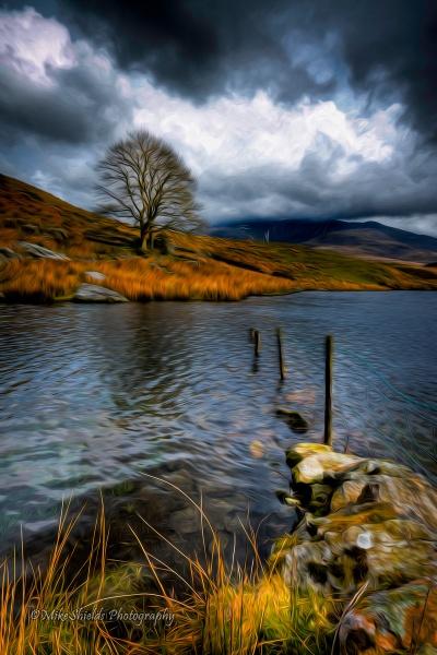 Sunken fence by MikeShieldsPhotography