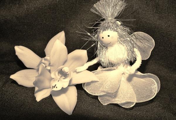 Little White flower Girl by nicolamcmahon