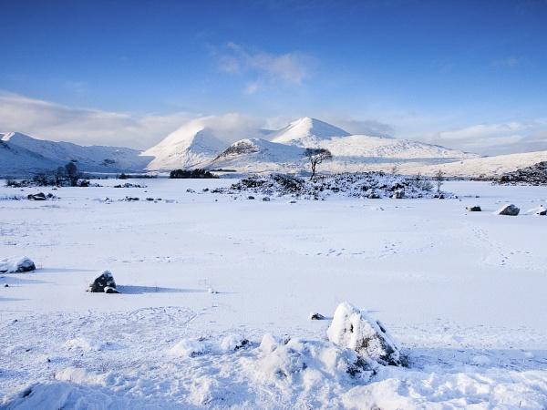 Frozen Loch by flatfoot471