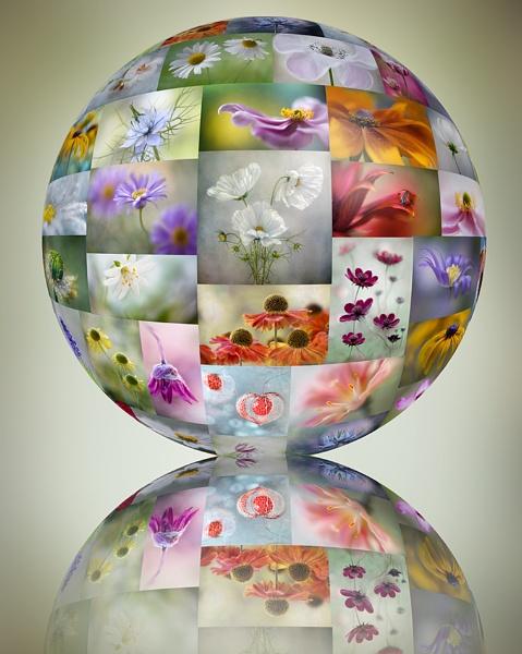 Flower globe by MandyD