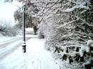 back into  Narnia