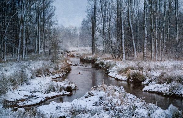 Winter wonder by mlseawell