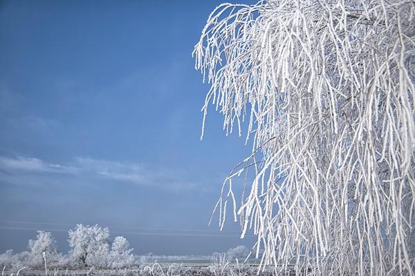 Sugar frosted landscape by llareggub
