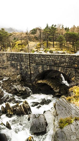 the bridge by Doug1