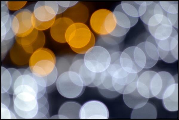 Christmas lights! by aniamoore