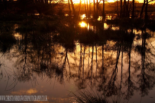 Sunrise reflection A by rigsby8131
