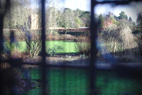 Forbidden Garden by pdjbarber