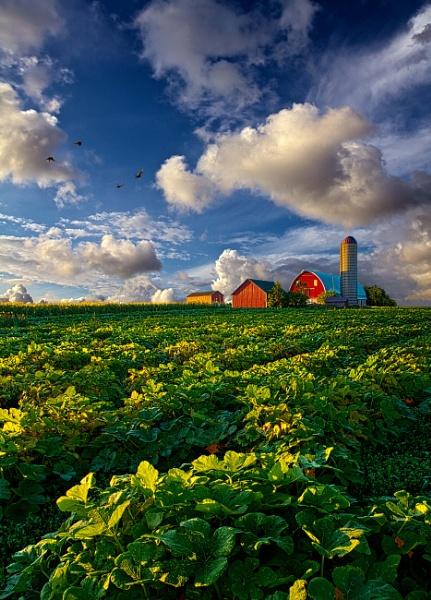 Living Wisconsin by HorizonHunter