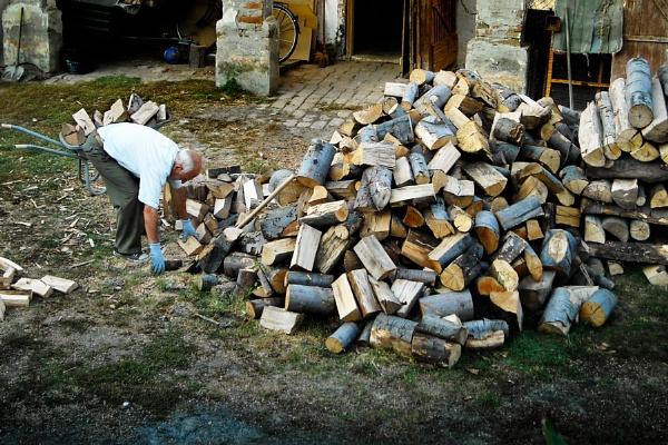 Lumberjack by MilanStamenkovic