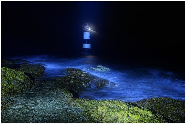 Light of night by Metty