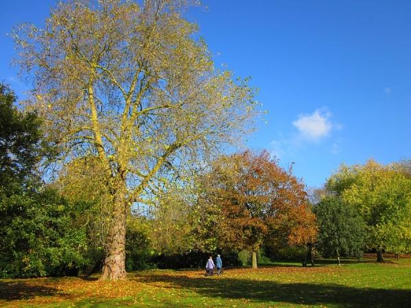 Autumn Strollers by Glostopcat