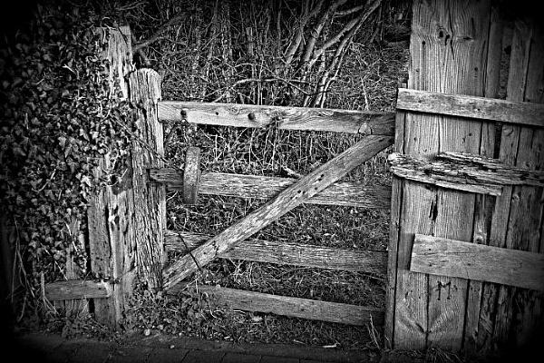 Old Gate by gardenersteve