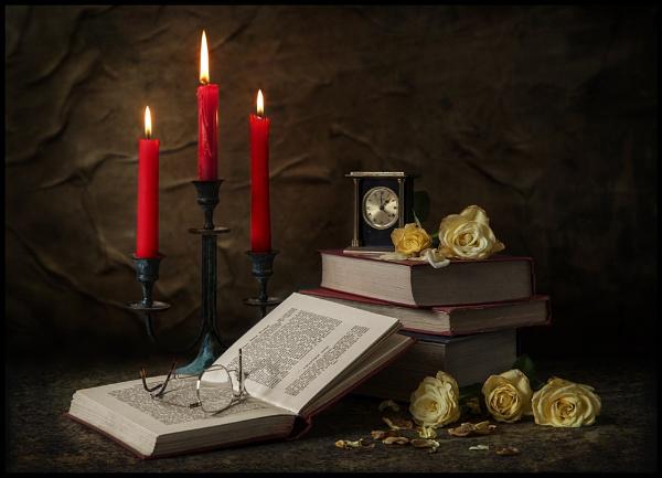 A Little Light Reading..... by Niknut