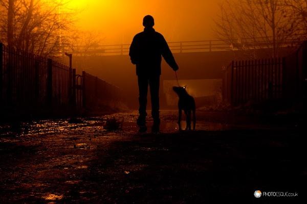 Dog Walking Silhouette by adonoghue