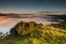 Conwy Valley Mist