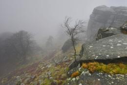 Stanage Mist