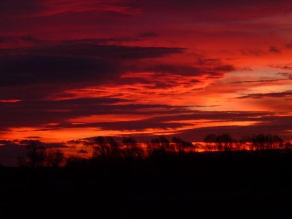 Sunrise In November by sammydarlo