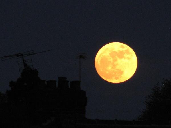 Moonrise by sammydarlo