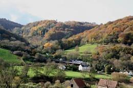 Wye Valley, late Autumn