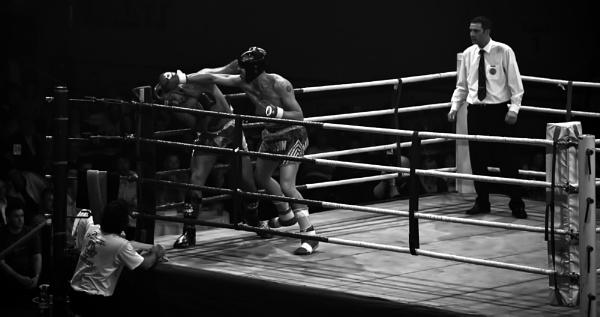 The Fight by AlanBullGuernsey