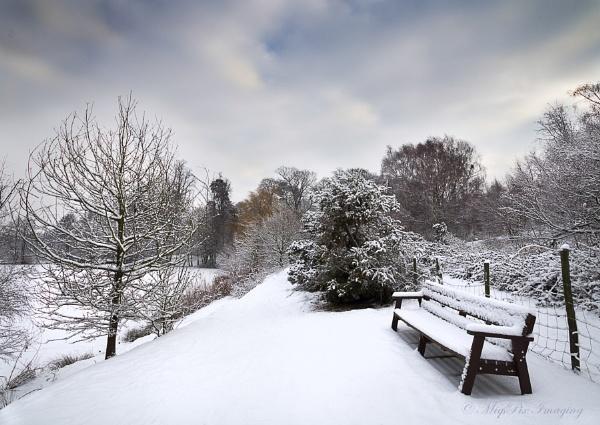 Snow Seat by MiqsPix