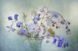 Spring Treasures