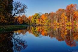 Eagle creek Tree Reflection