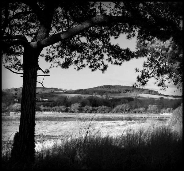 Otter Valley by bwlchmawr