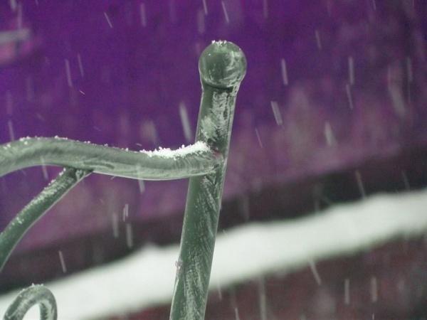 Royal Snow by LucasHughesPhotography