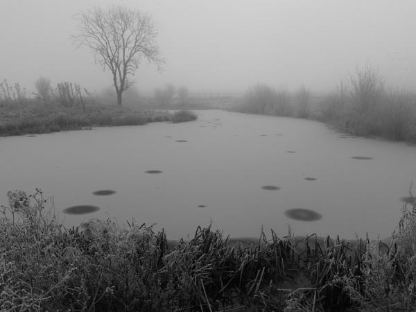 Winter morning by Gary66